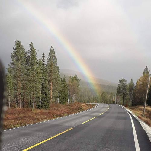 antonella-gentili-arcobaleno-sulla-strada